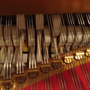 Marteaux en mouvement dans un piano à queue